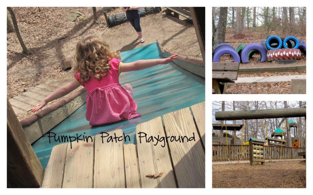 Pumpkin Patch Playground