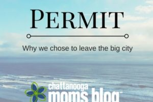 Parenting-without-a-Permit-why-we-chose-to-leave-the-big-city-