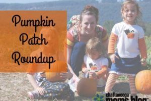 Pumpkin Patch Roundup
