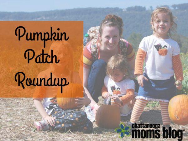 Pumpkin Patch Roundup