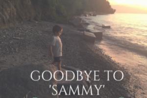 goodbyetosammy