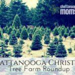 Christmas Tree Farms Roundup