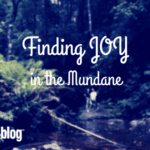Finding Joy in the Mundane