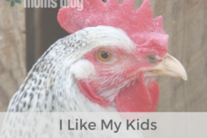 I Like My Kids Like I Like My Chicken
