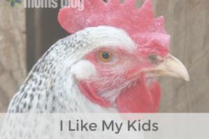 I Like My Kids Like I Like My Chicken