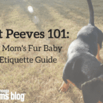 Pet Peeves 101: A Mom's Fur Baby Etiquette Guide