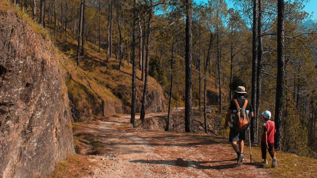 Family-Friendly Hikes Around Chattanooga