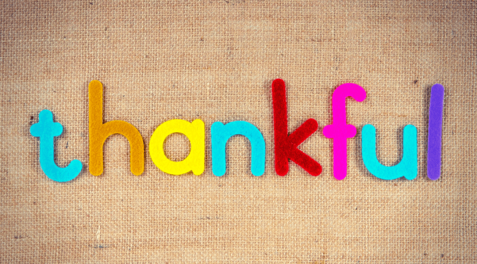 30 Things I'm Thankful for in 2020