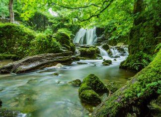 Chattanooga Area Waterfalls